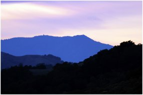 Winter - Mt. Tamalpais - Blue Twilight